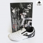 Preview: Taekwondo Shoes4