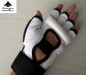 Preview: Taekwondo Hand Protector