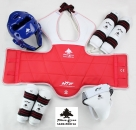 PINE TREE Taekwondo WT Safty Complete Set male